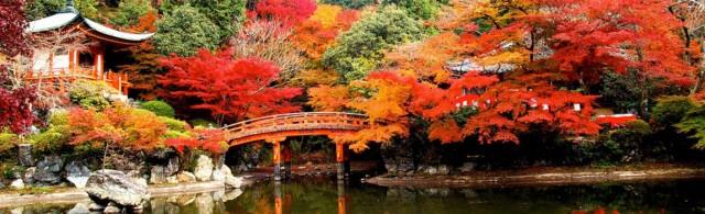 gay-honeymoon-destinations-kyoto
