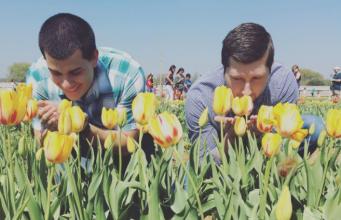 gay spring