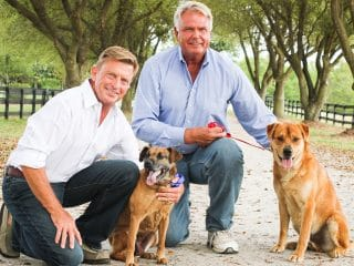 This Gay Couple Has Rescued More Than 10,000 Dogs