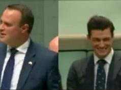 gay Australian MP