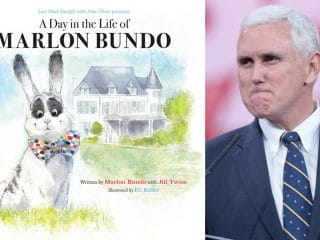 Gay parody of Mike Pence's bunny book becomes number one bestseller