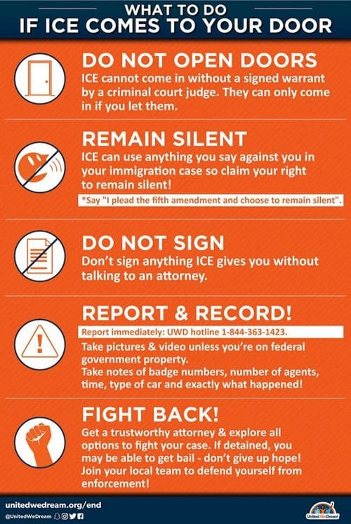 ICE, immigration and detainment infographic